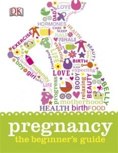 Pregnancy, the Beginner's Guide
