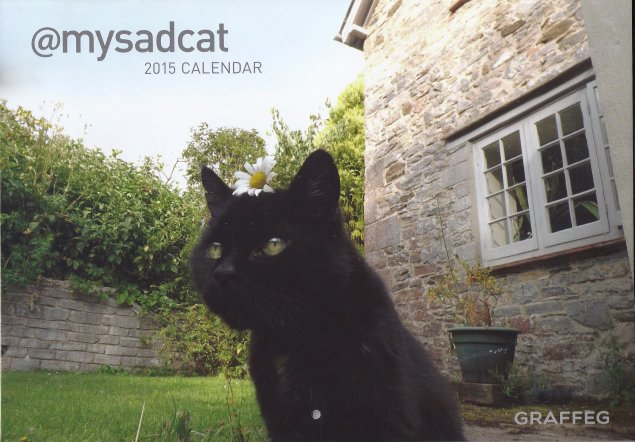 My Sad Cat Calendar 2015-Tom Cox