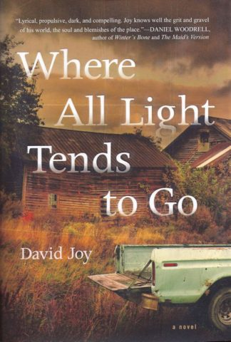 Where All The Light Tends to Go-David Joy