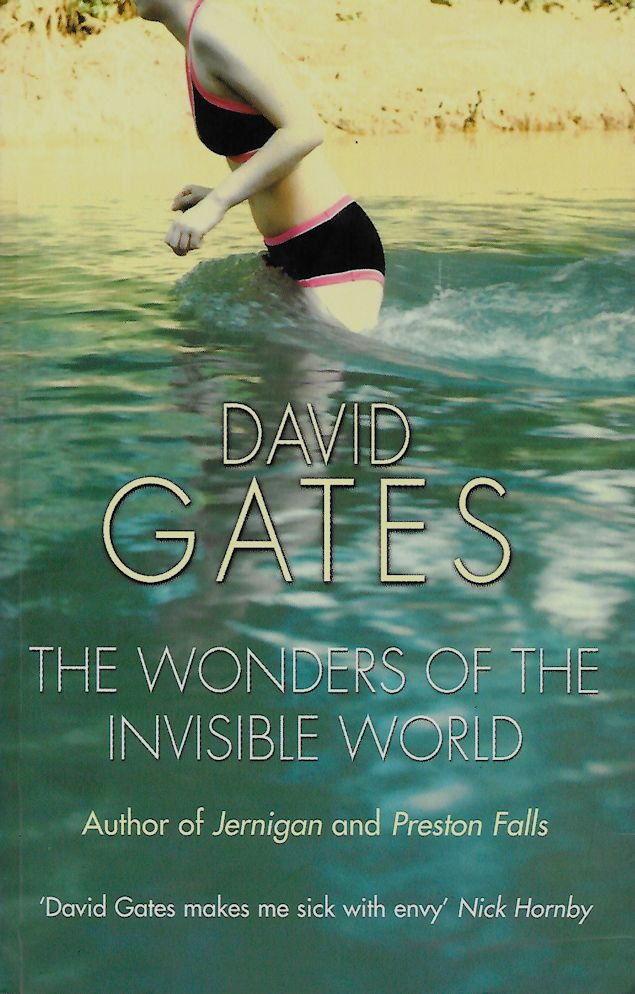 The Wonders of the Invisible World-David Gates