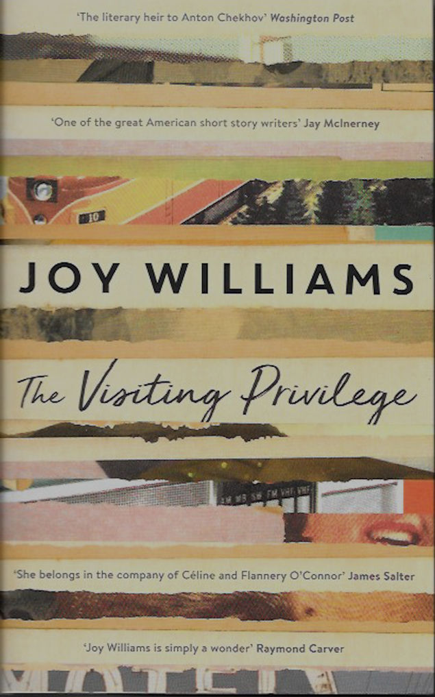 the-visiting-privilege-Joy Williams