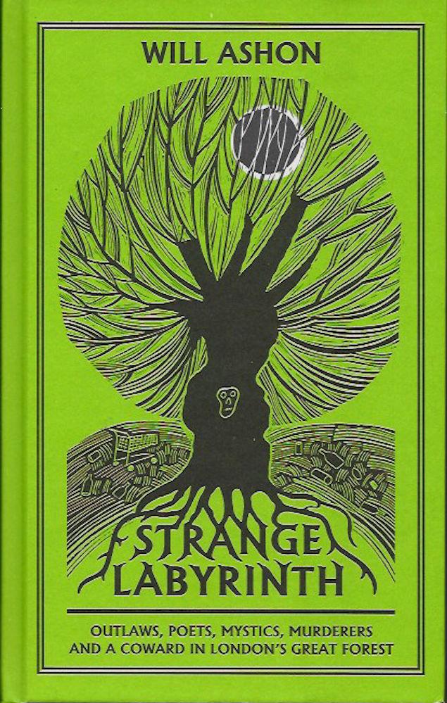 Strange Labyrinth-Will Ashon