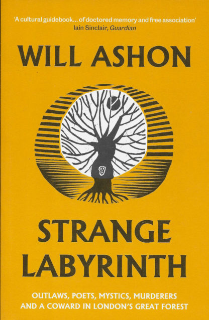 Strange Labyrinth-Will Ashon