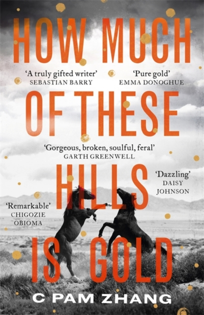 How Much Of These Hills Is Gold-C Pam Zhang