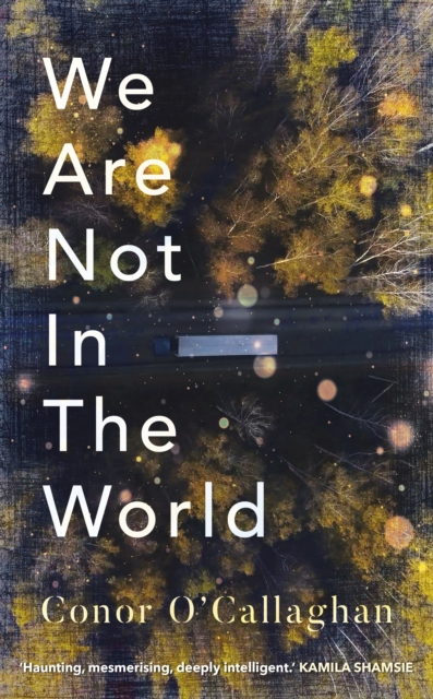We Are Not In The World-Conor O'Callaghan