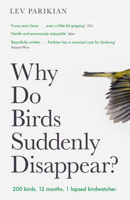 Why Do Bird Suddenly Disappear?