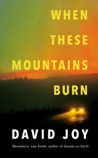 When These Mountains Burn-David Joy
